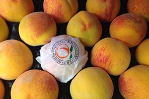 Fruta para empresas en Zaragoza