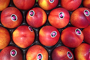 Fruta para oficinas en Zaragoza