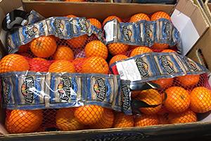 zumo de naranja para oficinas