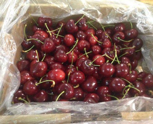 Comprar cerezas en Zaragoza